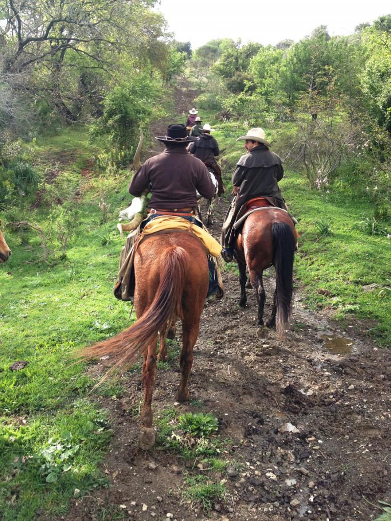 Ca-Bianca_trekking-a-cavall